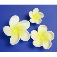 Frangipani Flower- Lemon Large